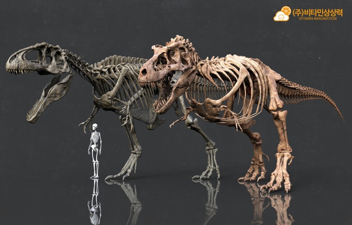 tiranosaurio_gigantosaurio